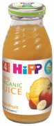 SOKIC HIPP BIO MULTIFRUIT 200ML