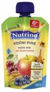 VOCNI DESERT MIX VOCA+ZITARICE 100G NUTR